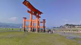 厳島神社ストリートビューと雨雲レーダー/広島県廿日市市