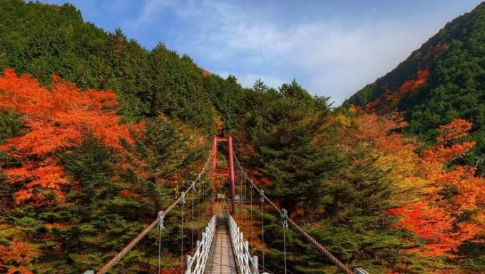 梅ヶ島の紅葉パノラマビュー