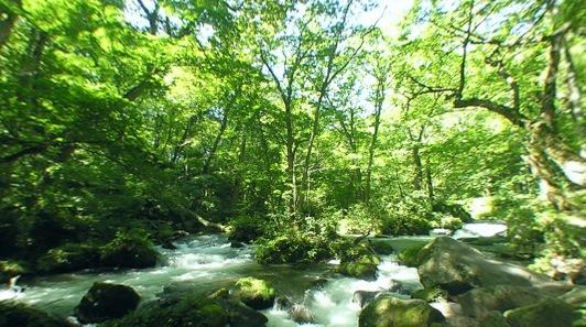 奥入瀬渓流・阿修羅の流れパノラマビュー