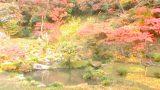 藤江氏 魚楽園のパノラマビューと雨雲レーダー/福岡県川崎町