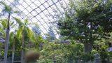 フラワーパーク好き必見!とっとり花回廊のストリートビューと雨雲レーダー/鳥取県南部町