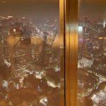 東京タワーの展望台からの景色が楽しめるストリートビュー