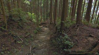 熊野参詣道(熊野古道)滝尻王子-継桜王子のストリートビューと雨雲レーダー/和歌山県
