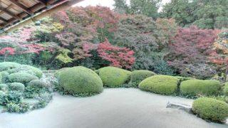 庭園好きにおすすめ!京都府 詩仙堂のストリートビューと雨雲レーダー