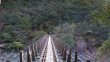 一度は行きたい!鹿児島県 屋久島「トロッコ道」のストリートビューと雨雲レーダー