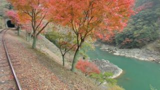 秋の紅葉が美しい京都 嵯峨野トロッコ列車のストリートビューと雨雲レーダー