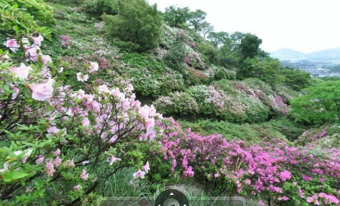皿山公園(つつじ)のパノラマビューと雨雲レーダー/福岡県糟屋郡志免町