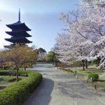 五重塔と桜が美しい世界遺産 東寺のストリートビュー