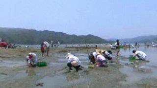 潮干狩りのパノラマビューと雨雲レーダー/高知県土佐市