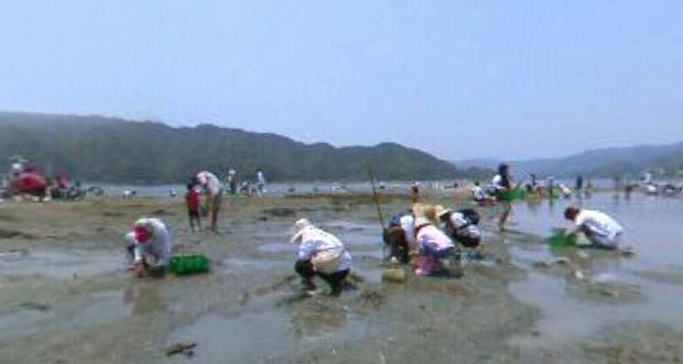 潮干狩りのパノラマビュー