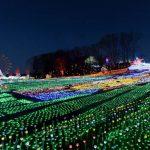 東京ドイツ村のイルミネーションパノラマビュー