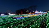 東京ドイツ村のイルミネーションパノラマビューと雨雲レーダー/千葉県袖ケ浦市