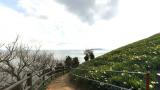 黒岩水仙郷のパノラマビューと雨雲レーダー/兵庫県南あわじ市