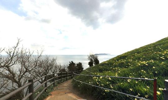 黒岩水仙郷のパノラマビュー