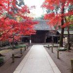 平林寺のパノラマビュー