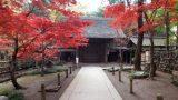 平林寺のパノラマビューと雨雲レーダー/埼玉県新座市