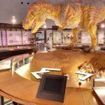 福井県立恐竜博物館のストリートビュー