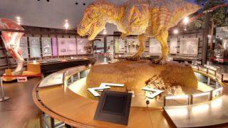 福井県立恐竜博物館のストリートビューと雨雲レーダー/福井県勝山市