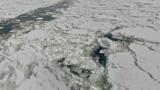 網走湾砕氷船上からの流氷ストリートビューと雨雲レーダー/北海道網走市